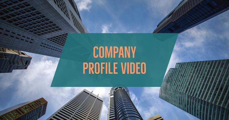 1 company profile video